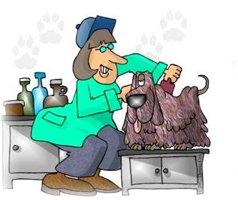 парикмахер собак Хороший парикмахер должен не только хорошо стричь собак, но и уметь находить с ними общий язык