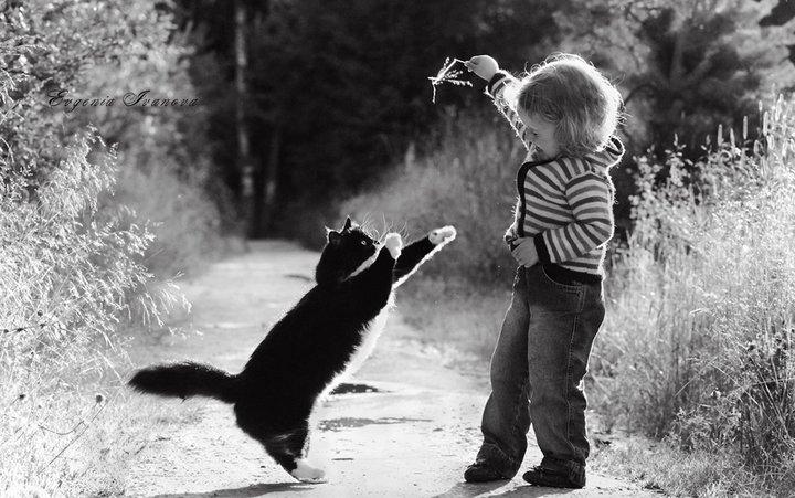 если с кошкой по пути слушать