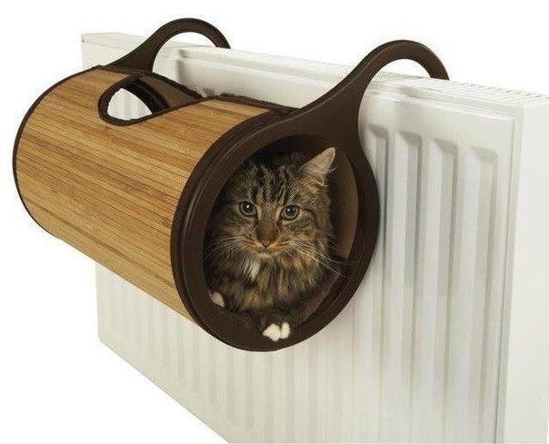лежак кошки